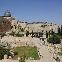 Старый Иерусалим. :: Paparazzi