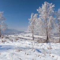 Февральский пейзаж :: Анатолий Иргл