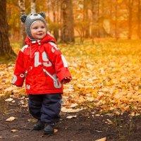 Осенний мишка :: Ева Олерских