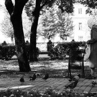 старушка и голуби :: Бармалей ин юэй