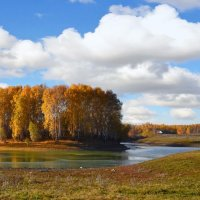 Берёзовый  остров :: Геннадий С.
