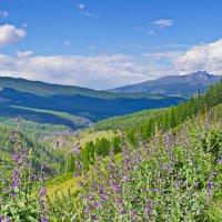 Долины и горы :: val-isaew2010 Валерий Исаев