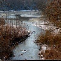 Зимняя река :: Нина Бутко
