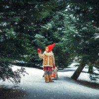 Гномик на прогулке :) :: Elena Klimova