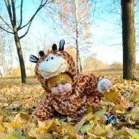 Добрая осень. :: Любовь Кожевникова