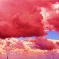 Cherry Sky :: Света Гончарова