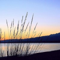 Нежный рассвет на озере Иссык-Куль :: GalLinna Ерошенко