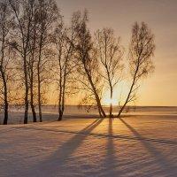последнее утро зимы :: Николай Мальцев