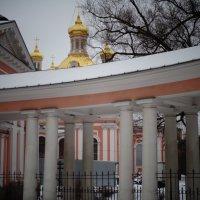 Крестовоздвиженский собор. (февраль 2017 года) :: Светлана Калмыкова