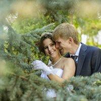 свадебная :: Валёк Сухотский