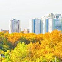 Городской пейзаж :: Олег Оборин