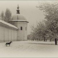 Свенский монастырь :: Лариса Березуцкая