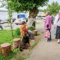 Большой любитель мороженого. :: Владимир Безбородов