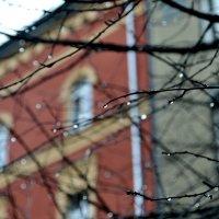 Дождь в Кракове :: Мария Тишина