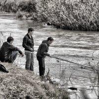 Рыболовные дела :: Андрей Селиванов