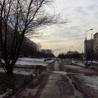 Первый день весны. Весна еще не очень красна :: Андрей Лукьянов