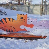Мартовские коты :: Люда Удалых