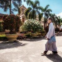 Молодой буддист...Вьетнам! :: Александр Вивчарик