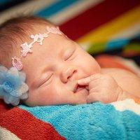 Сладко сплю! :: MarinaZi .