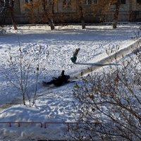 Зимние радости ... :: Владимир Икомацких