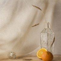 апельсин и колоски :: Светлана Горбачёва