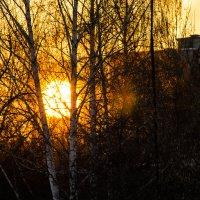 закат во дворе... :: Alexandr Staroverov