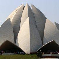 Храм Лотоса — главный храм религии Бахаи в Индии :: vasya-starik Старик