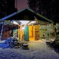 Зимовка. :: Сергей Щербатюк