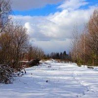 последние зимние дни :: оксана