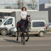 Краснодарская амазонка или кубанская казачка (кому как понравится) :: Павел Руденко