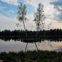 Остров двух берез... :: Sergey Gordoff