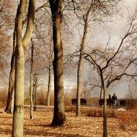 парк Гомеля в начале марта :: Александр Прокудин