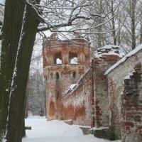 руины Фёдоровского Городка в Царском Селе :: Елена