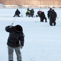 Рыбалка :: Александр Михайлов