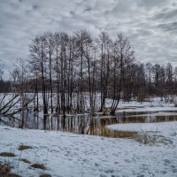 Начало марта 2017 №2 :: Андрей Дворников