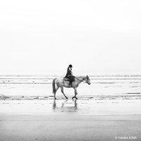 Отдых в Нормандии :: Фотограф в Париже, Франции Наталья Ильина