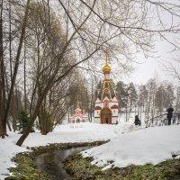 Святой источник в п. Талеж :: Dmitriy Martynenko