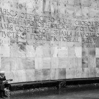 Одиночество в мегаполисе :: Василий Либко