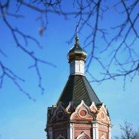 Купол Вознесенского собора. г. Касимов :: Николай Варламов