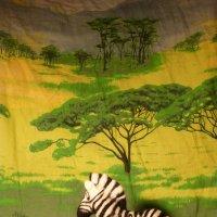 Замбези :: genar-58 '