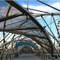 Сингапурский лабиринт (мостик Helix) :: Андрей K.