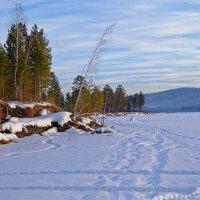 На замёрзшей реке :: Евгений Карский