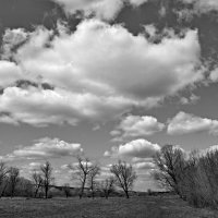 Облака. :: владимир