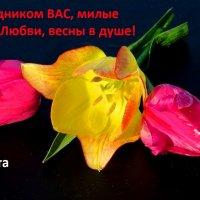 С ПРАЗДНИКОМ, 8 марта. :: Дмитрий Строганов