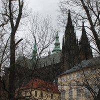 Прага :: Алексей Башкирцов