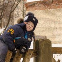 На заборе :: Алексей Бродовой