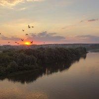 Летнее утро на Дону :: Юрий Клишин