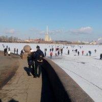Весна в Санкт-Петербурге. :: Наталья Куклина