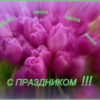 Весна пришла ! :: Мила Бовкун