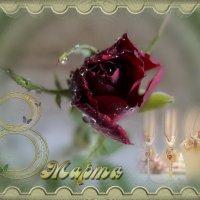 С нежным праздником весны я сегодня поздравляю...всех женщин на планете Земля! :: Людмила Богданова (Скачко)
